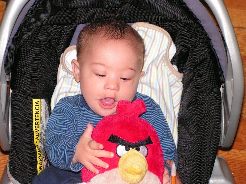Thanksgiving 2010 065