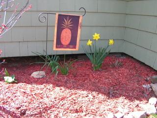 Spring_happenings_005